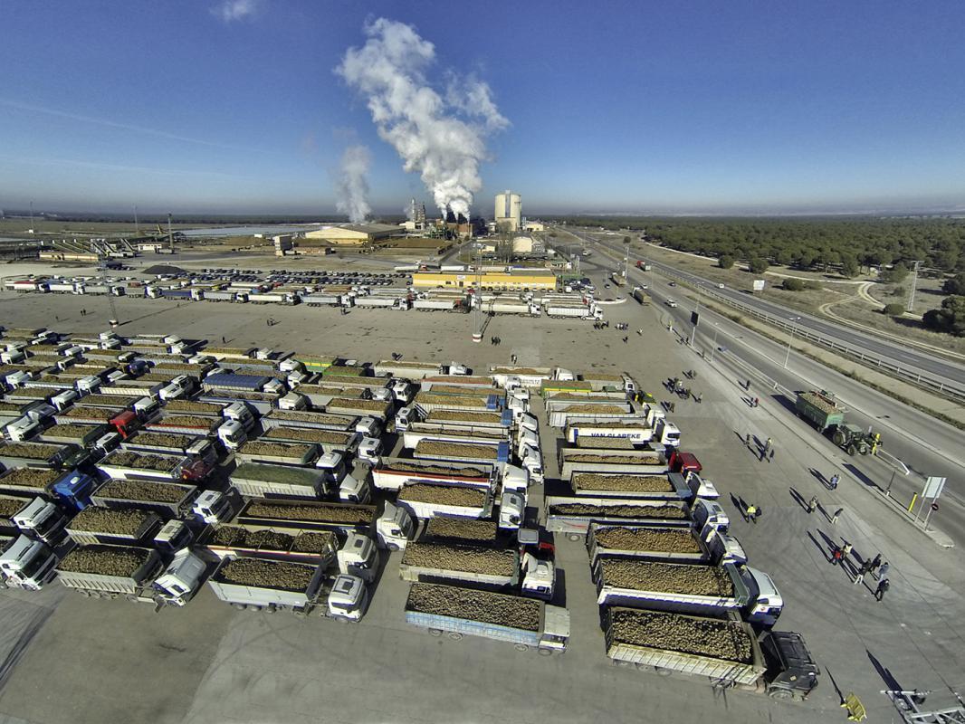 La Cooperativa ACOR cierra la campaña con 902.031 toneladas de remolacha, 22.000 menos que hace un año