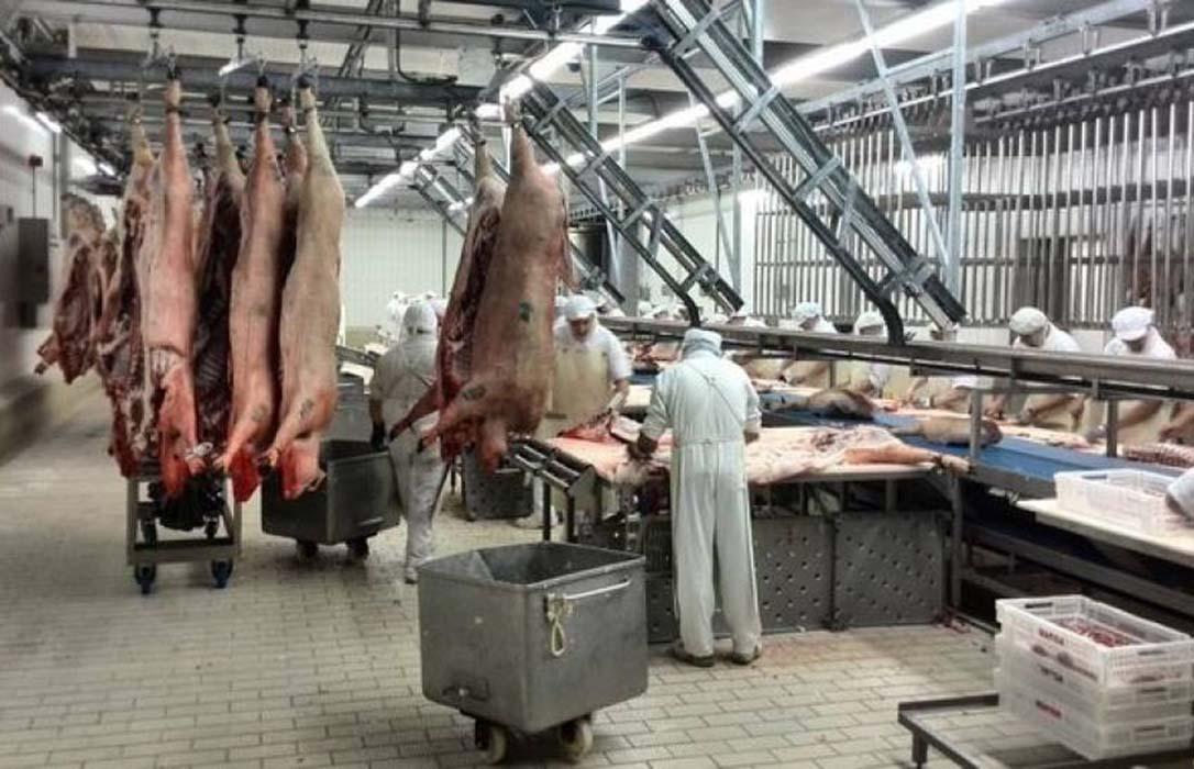 Piden que los mataderos exijan a los empresarios el contrato firmado en su origen entre comprador y vendedor
