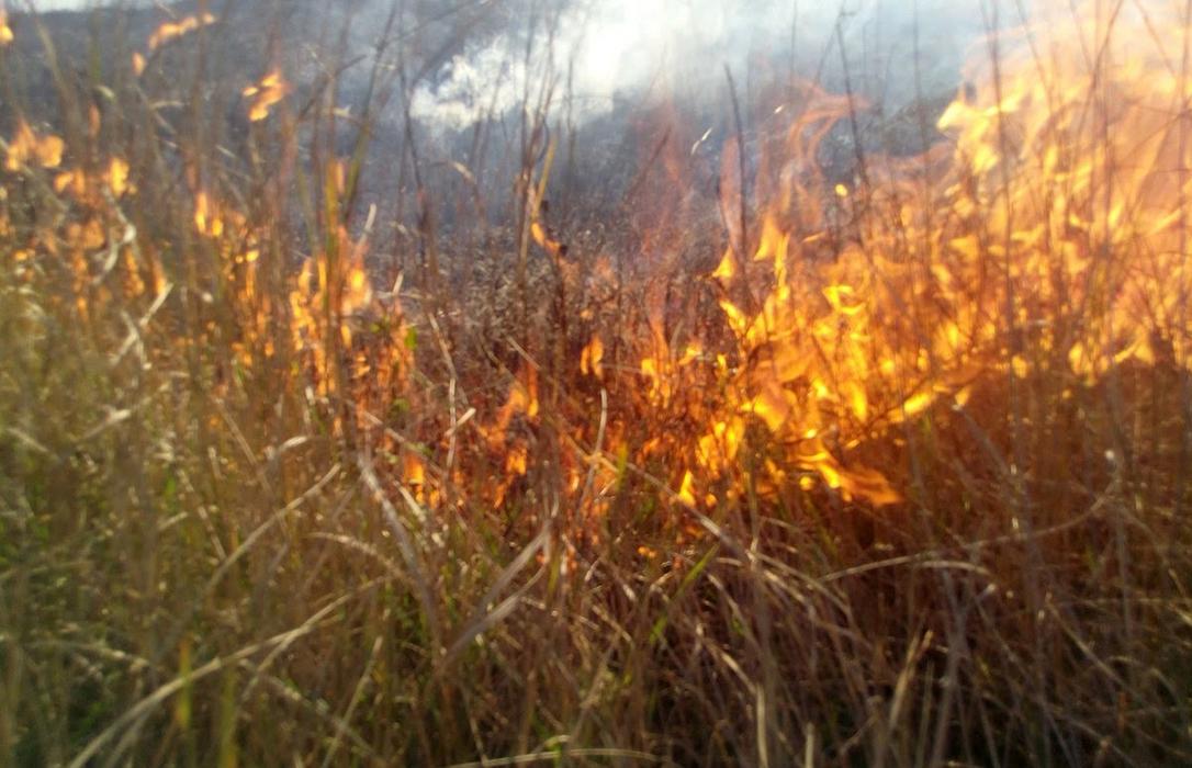 Dos nuevas muertes: Un agricultor de 75 años en una quema y otro, atrapado por una máquina de tronzar madera