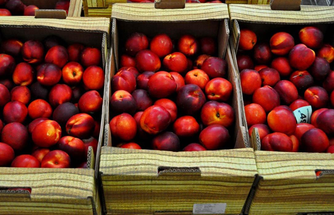 Bruselas pondrá en marcha los observatorios de mercado para el vino y el de frutas y hortalizas