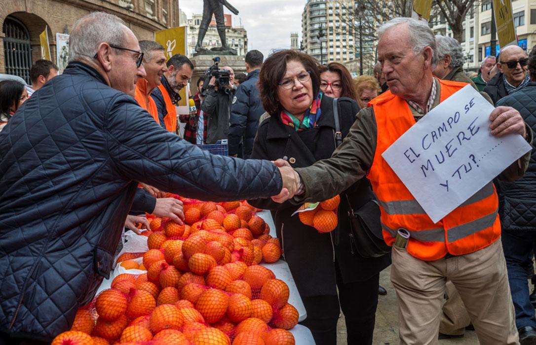 Protesta del sector de los cítricos: Reparto de naranjas en Valencia antes de ir a las puertas de la CE