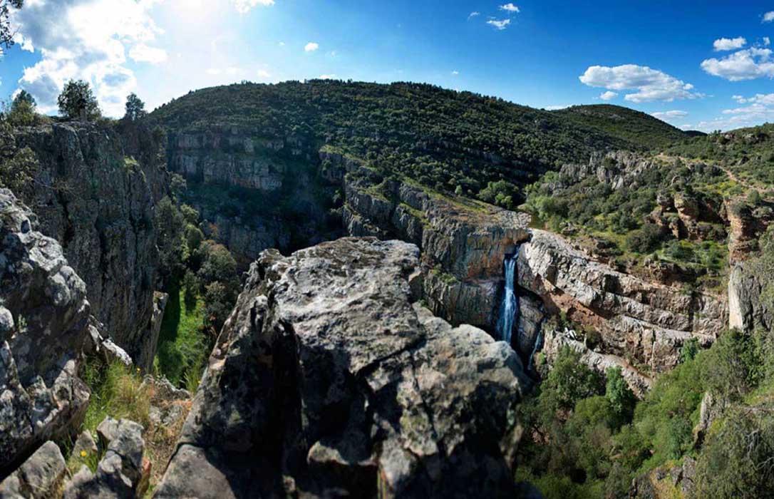 El estado de salud de las masas forestales españolas experimenta un proceso de cierta mejora en 2018