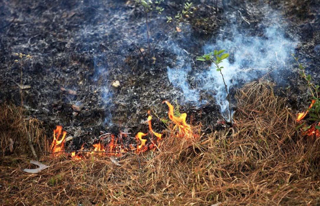 Fallece una mujer de 83 años durante una quema de rastrojos en Bande (Ourense)