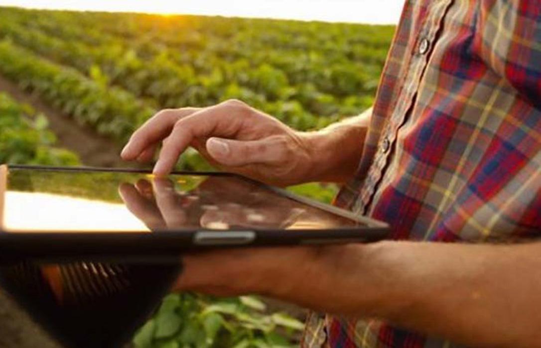 El Gobierno aprobará este viernes su estrategia de Digitalización del Sector Agroalimentario, Forestal y del Medio Rural