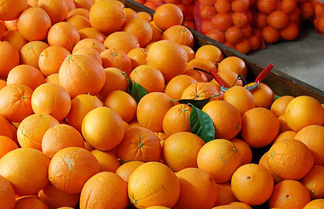 El precio de los alimentos se multiplicó por 4,5 de origen a destino en marzo arrastrado por los cítricos