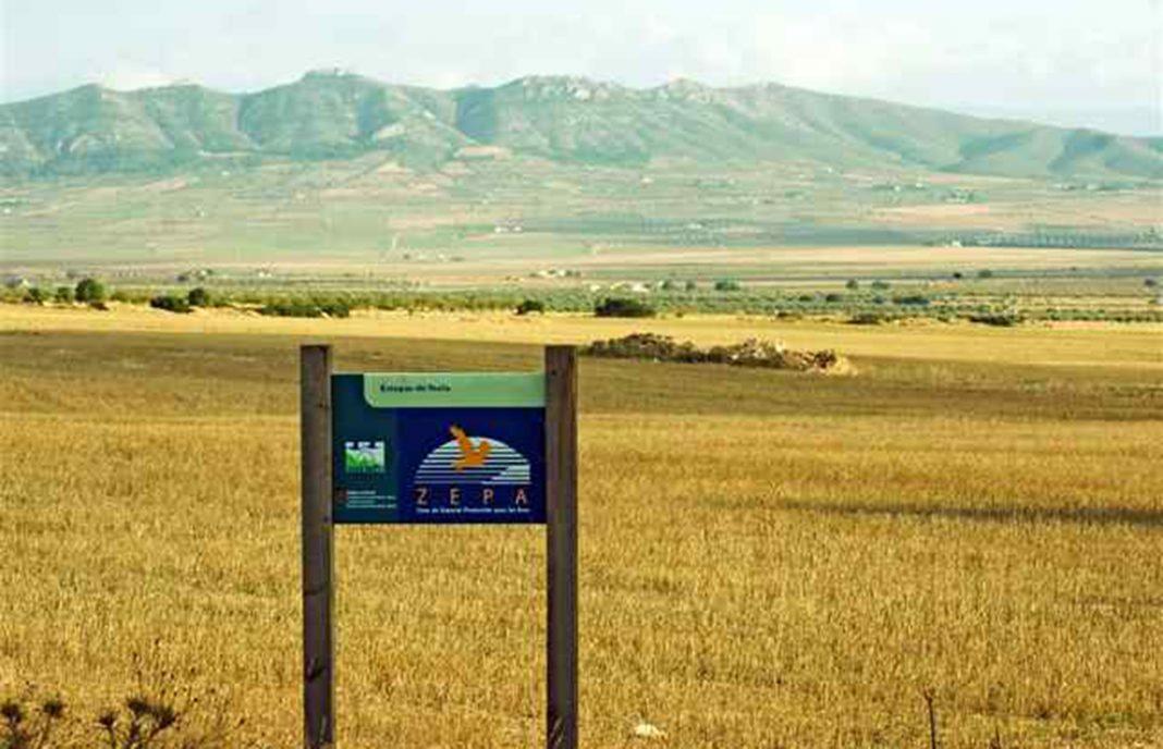 La Justicia anula la orden que aprueba el Plan de Gestión de las Zonas ZEPA de Castilla-La Mancha