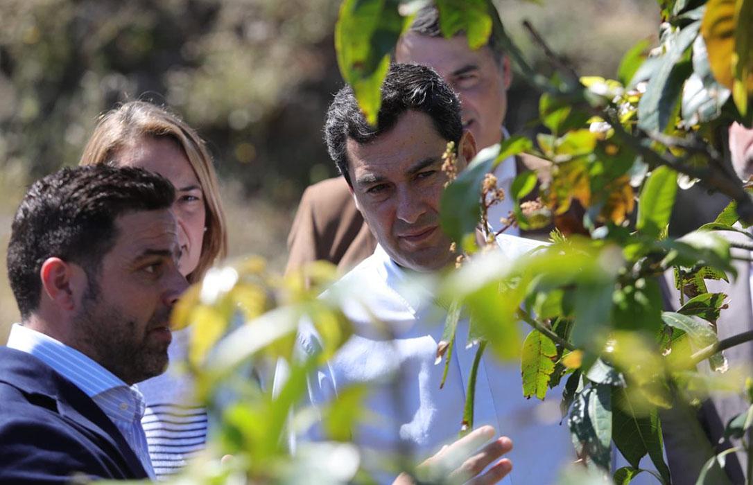 El presidente andaluz marca como una prioridad del Pacto por el Agua el sector subtropical de la Axarquía