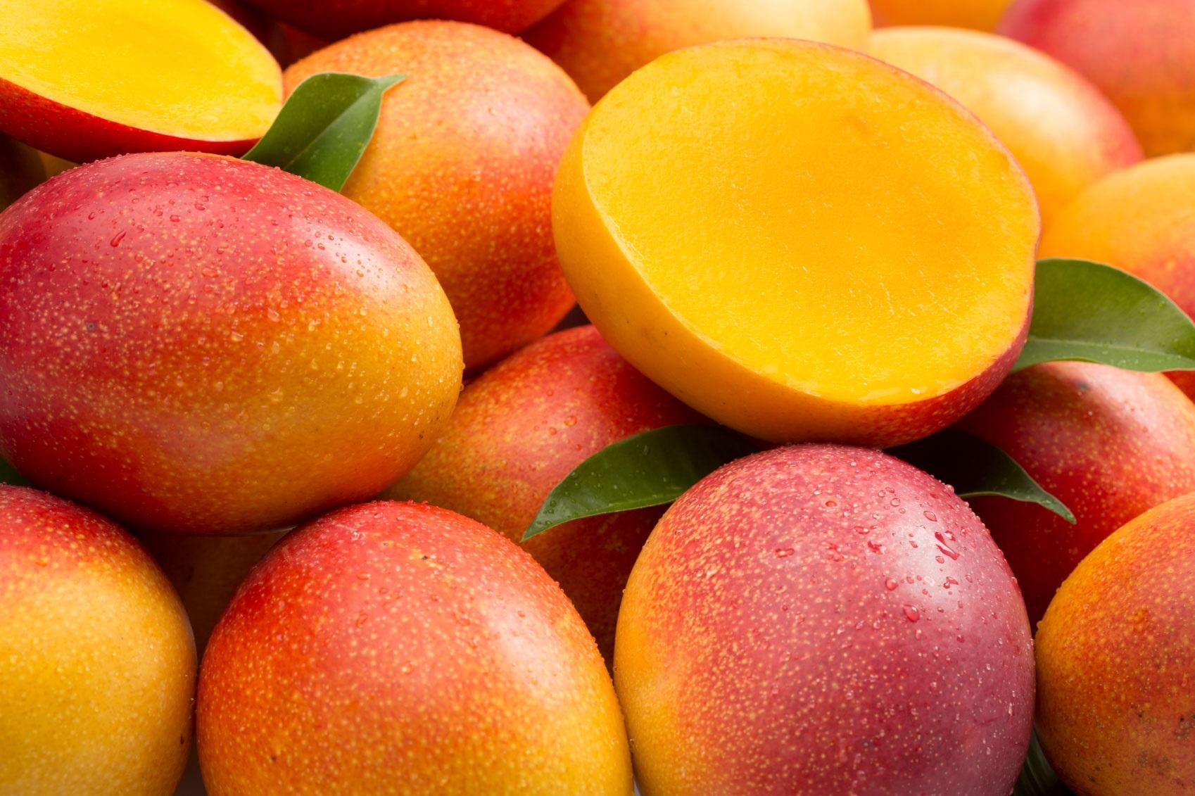 El II Congreso Internacional del Mango promoverá encuentros comerciales