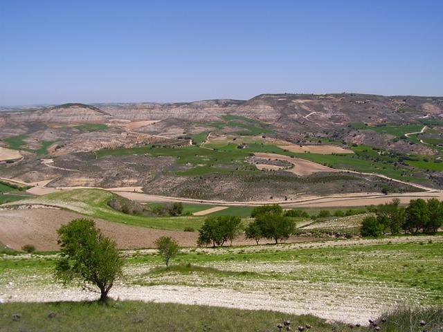 Creada la Plataforma de Asociaciones de la Alcarria Conquense para impulsar la comarca