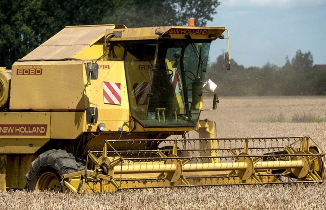 INNOVATRIGO demuestra que aplicar las Buenas Prácticas Agrícolas en cereal es rentable