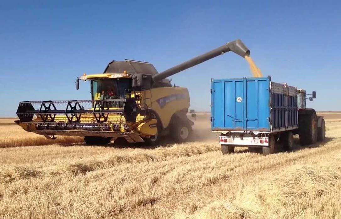 Arranca la campaña de cebada a 171 euros la tonelada y la paja de 1ª dobla el precio de hace un año