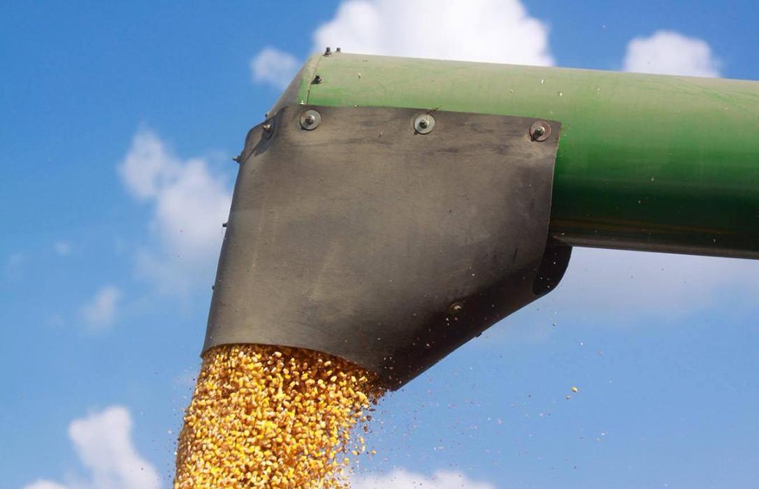 Los precios mayoristas de los cereales siguen sin levantar cabeza y acumulan más caídas