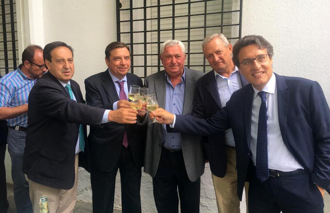 Planas accede a regular la retirada de stocks de vino de la campaña anterior y evitar las mezclas