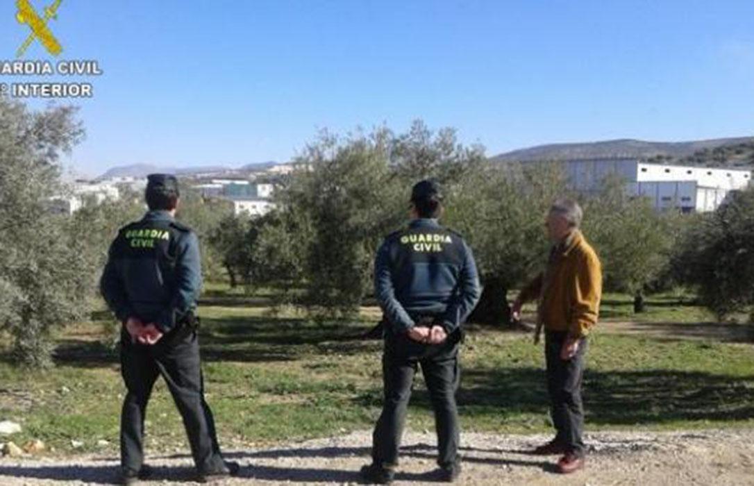 A perro flaco…: Un jubilado detenido y otro investigado por estafar 80.000 euros a 84 olivareros