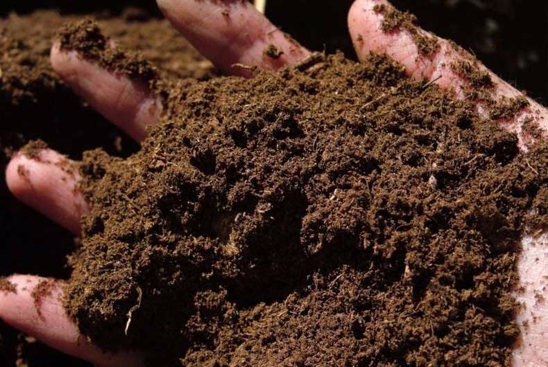 Extremadura promueve la utilización del compost procedente de residuos como abono