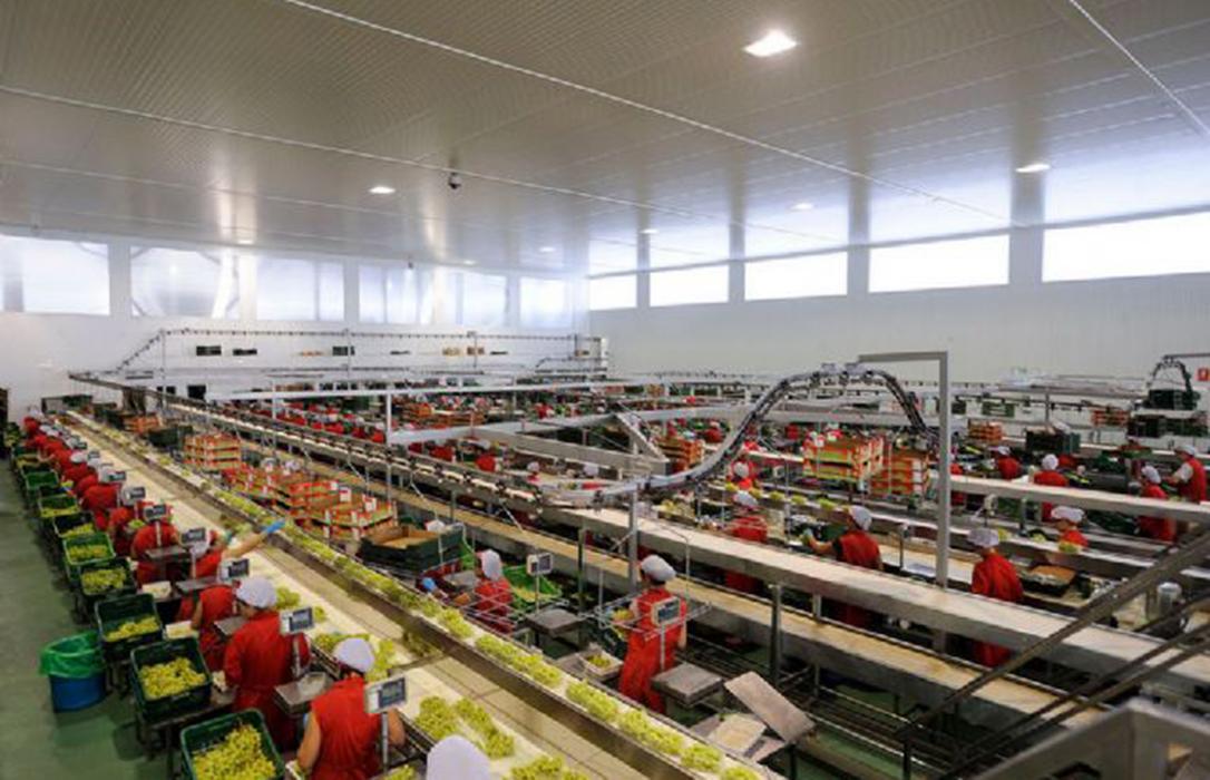 La cooperativa agraria COATO cumple 40 años impulsando el cultivo de productos sostenibles