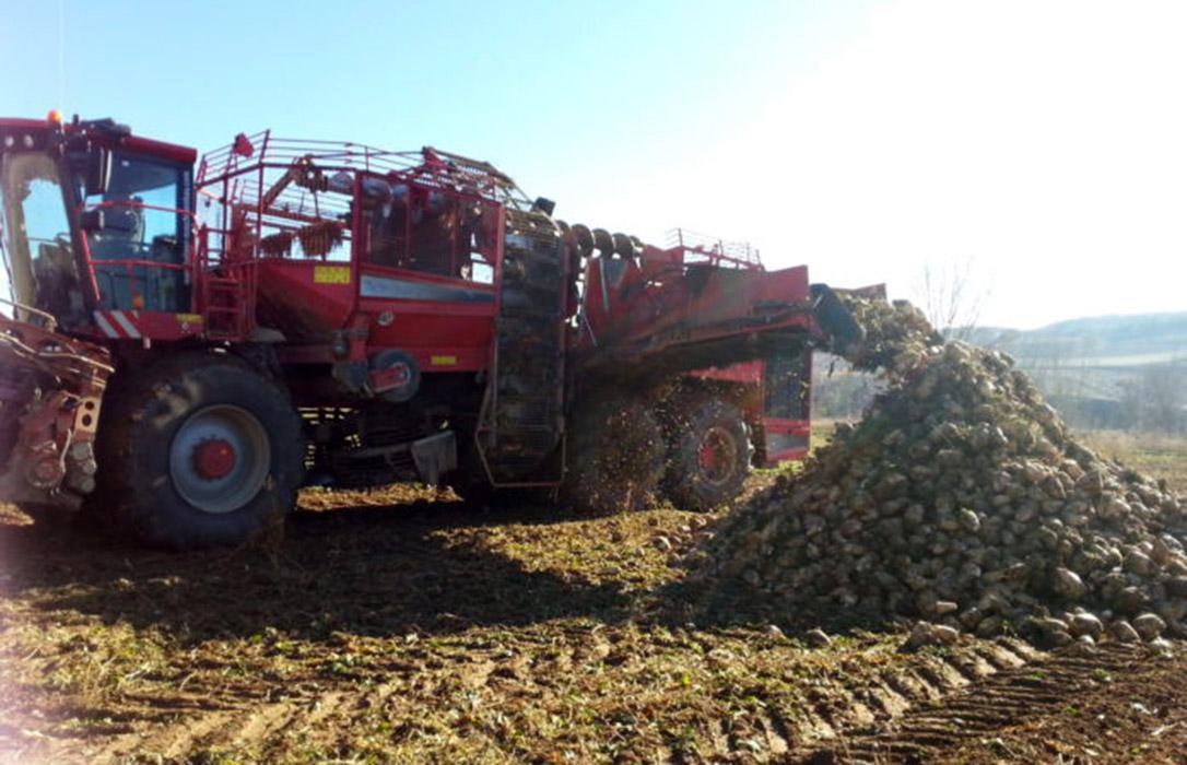 Los agricultores ingresan los intereses de demora de la deuda de los 3€ tonelada de remolacha de la campaña 2011/2012