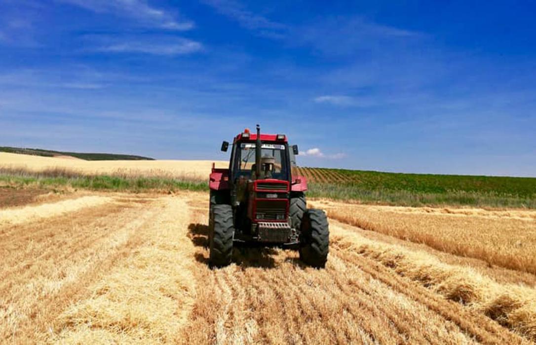 Castilla-La Mancha, Navarra, Extremadura, Andalucía,… las CCAA empiezan a abonar el adelanto de la PAC