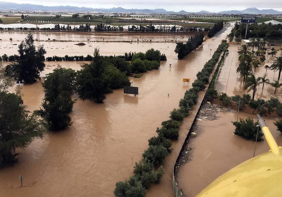 Habrá beneficios fiscales a las explotaciones agrícolas y ganaderas de la CValenciana afectadas por la gota fría