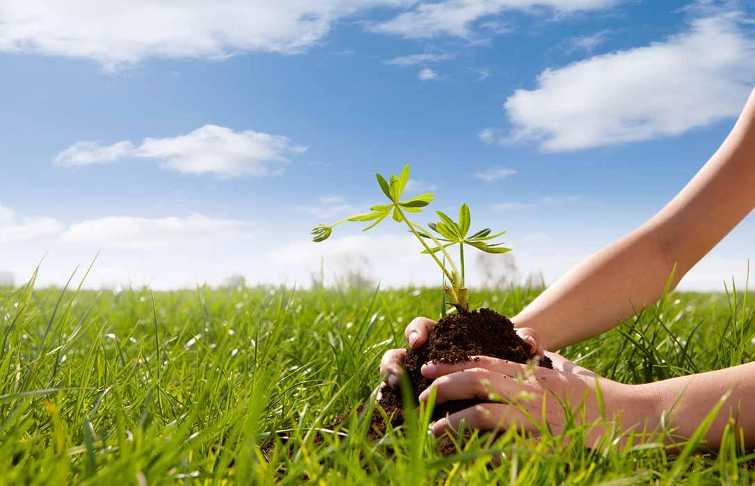 De Heus apuesta por la sostenibilidad ambiental en sus sistemas de producción en todas sus fábricas