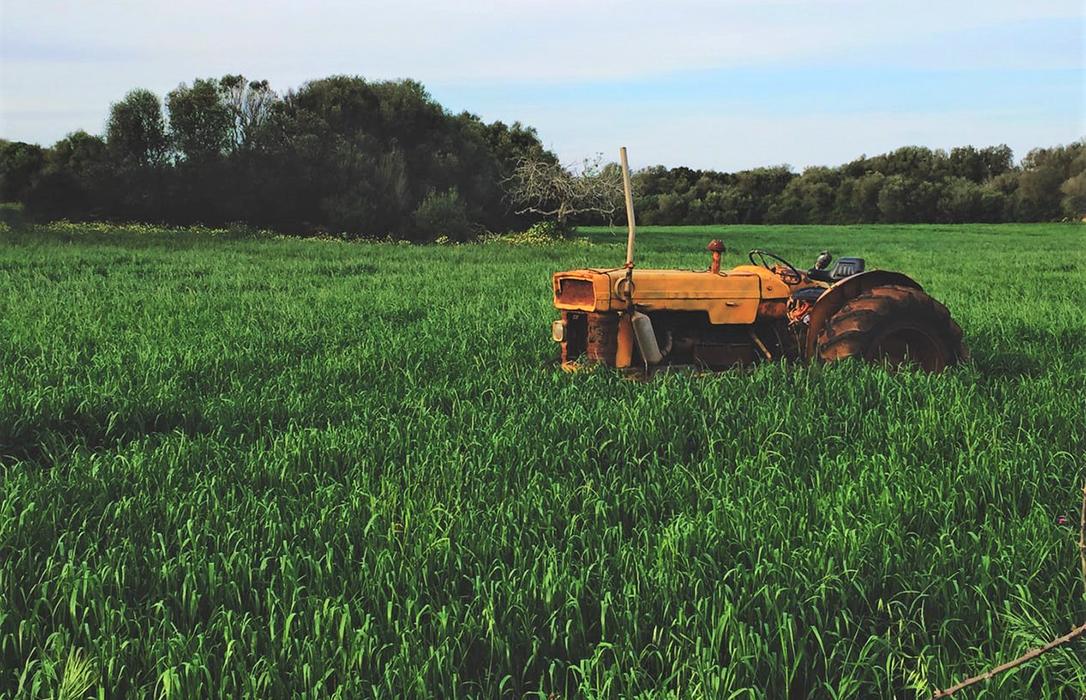 Advierten del otro drama de la España Vaciada: El abandono de la agricultura en zonas rurales