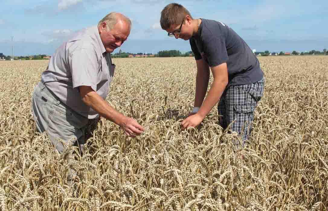 La PAC 2020 se pone en marcha: Más controles sobre la figura del agricultor activo y apoyo a la incorporación de jóvenes