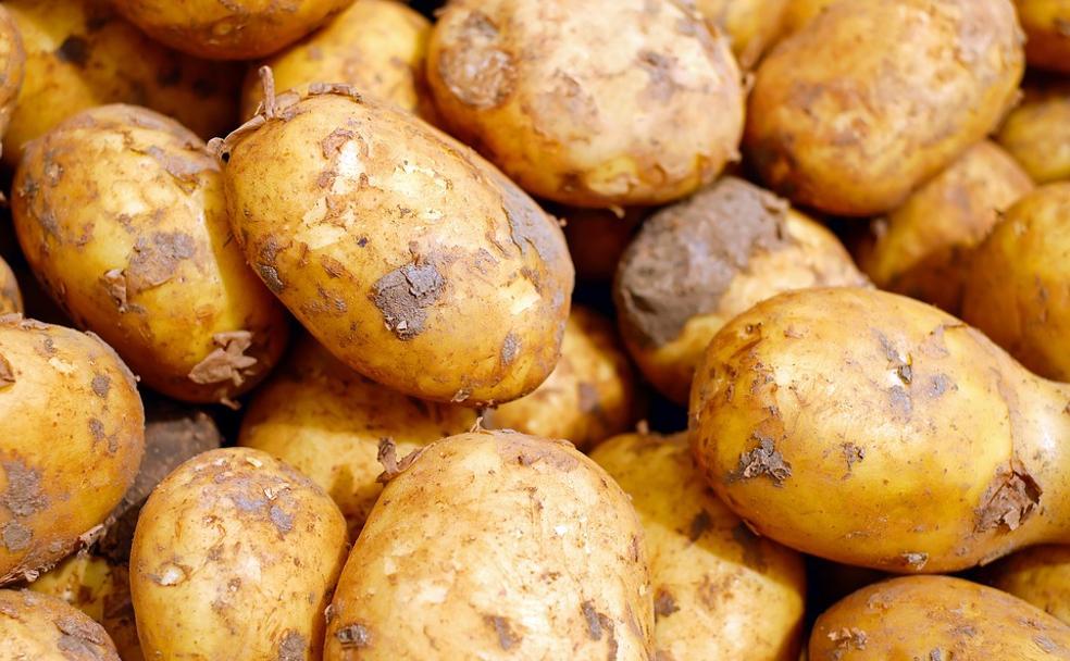 Se empieza a recuperar el precio de la patata roja gracias a la exportación para Portugal