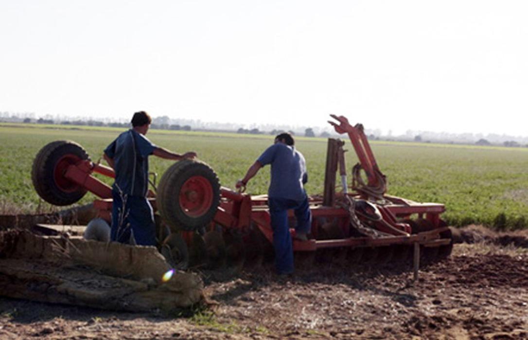 Satisfacción por la publicación de la resolución definitva de las ayudas de jóvenes agricultores convocatoria ITI Cádiz 2018