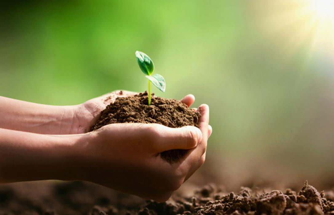 CUMBRE DEL CLIMA: Bruselas presenta su Pacto Verde Europeo que busca movilizar 100.000 millones de euros