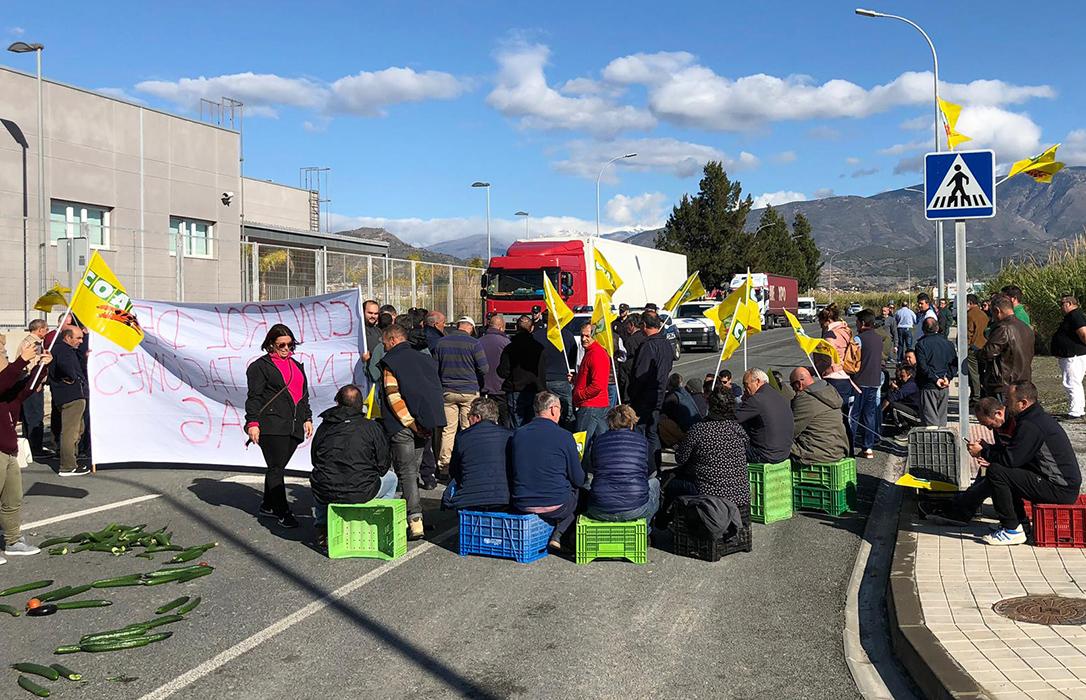 El aceite se va a los puertos: A mediados de julio se retomarán las protestas del sector rotas por el covid