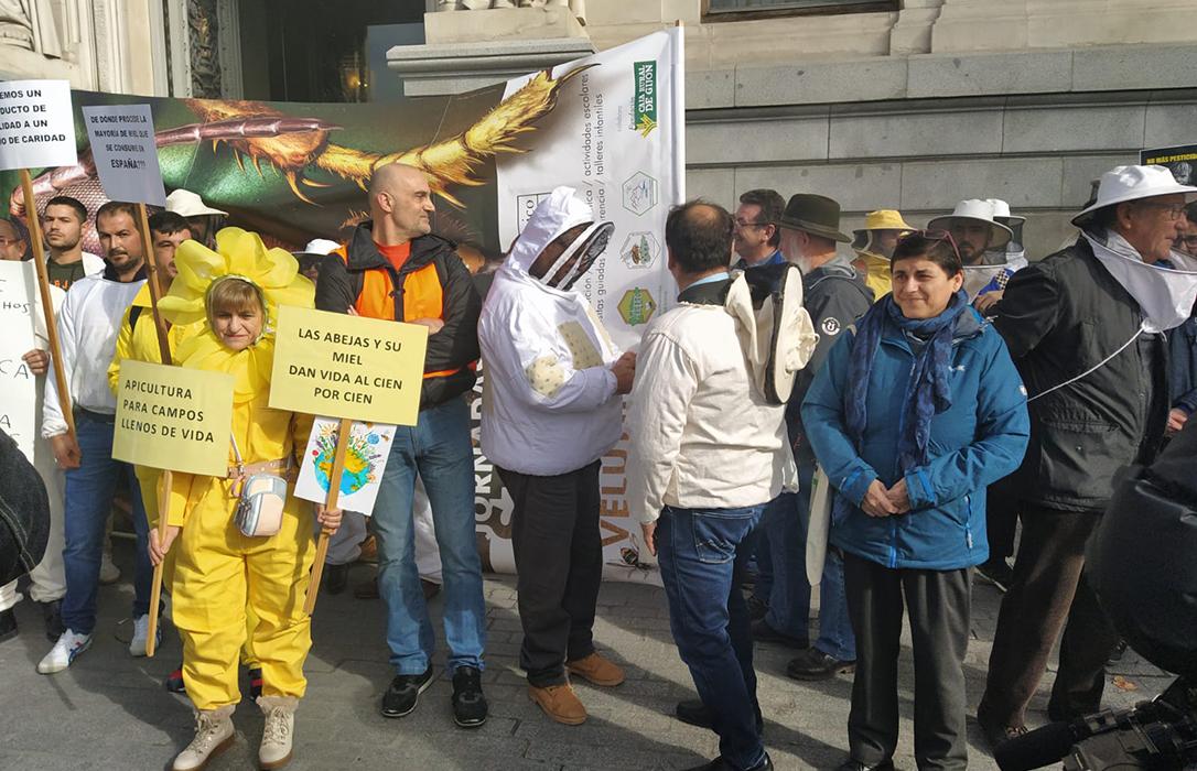 Los apicultores marchan hasta el Congreso para denunciar la muerte de abejas y el mal etiquetado de miel