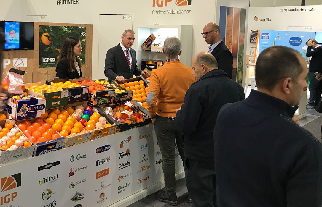 La IGP Cítricos Valencianos llega a Fruit Logistica representando a 61 operadores registrados
