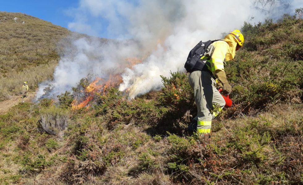 Los ganaderos comienzan las quemas de matorral con supervisión para regenerar pastos en una experiencia piloto