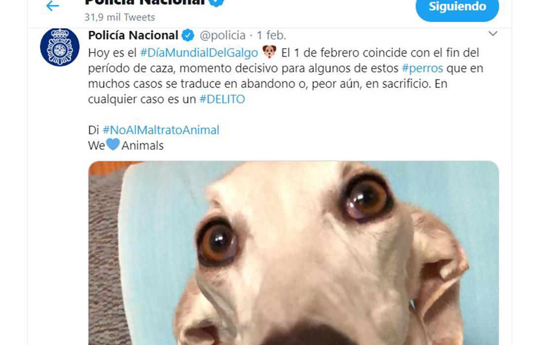 Exigen a la Policía Nacional rectificar sus comentarios en RRSS acusando a los cazadores de abandonar y maltratar a sus perros