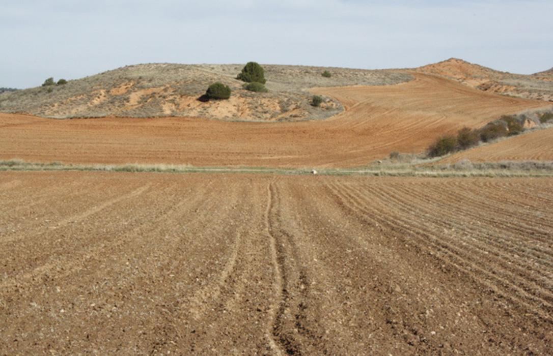 Serranía Celtibérica lamenta la falta de visión hacia las zonas rurales en los presupuestos de la UE