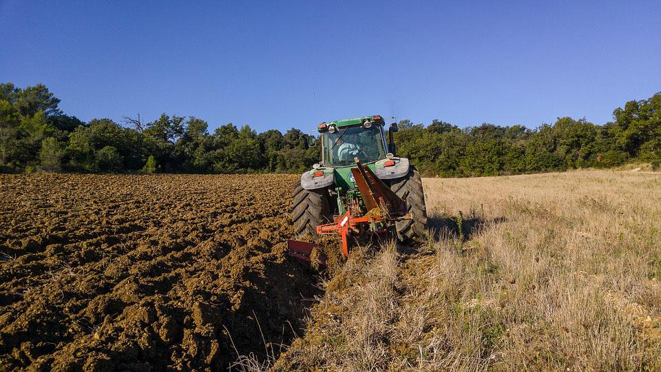 Andalucía abonará 87 millones de la PAC a partir del 1 de abril y alcanzará el 98% del pago de la pasada anualidad