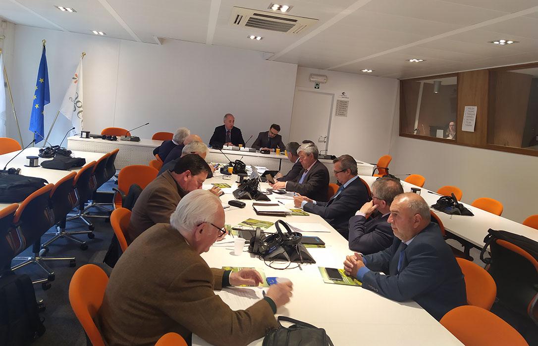 Si Europa no viene al campo, el campo va a Europa: Cooperativas Andalucía defiende en Bruselas una PAC fuerte