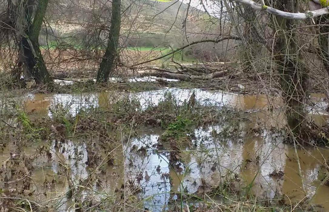 La falta de limpieza en los cauces provoca inundaciones de parcelas en la comarca de Molina y otros puntos de Guadalajara
