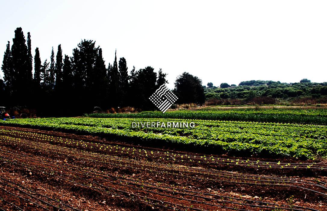 Nace la 'Comunidad de Agricultores' europea en torno a la diversificación de cultivos