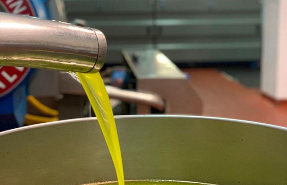 Los aranceles paralizan las exportaciones de aceite de oliva español a EEUU: Un 92% menos frente a marzo del año pasado