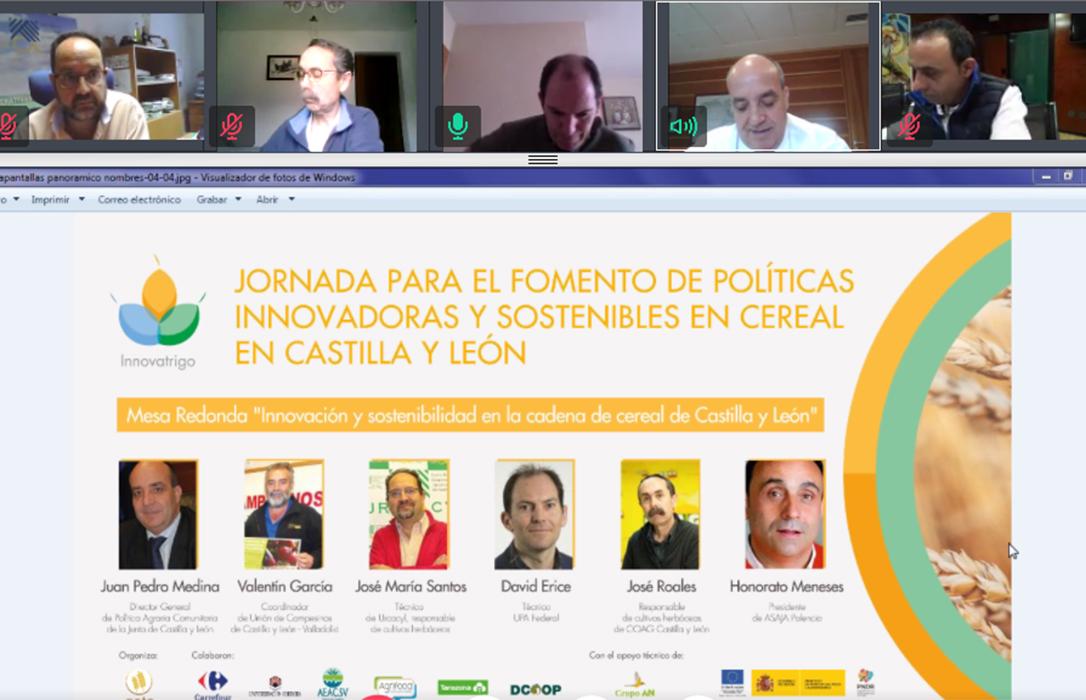 Innovatrigo celebra su jornada online para el fomento de políticas innovadoras y sostenibles en cereal en Castilla y León