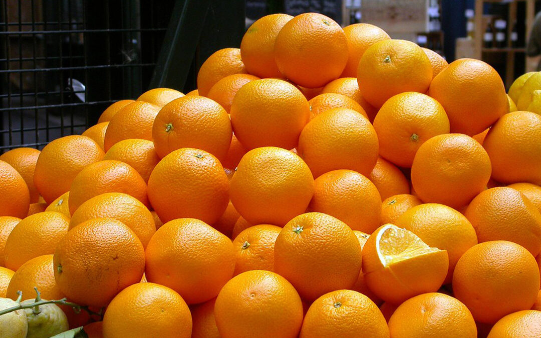 """Califican de """"gran disparate y auténtico atropello» que Reino Unido suba los aranceles a las clementinas y naranjas de la UE"""
