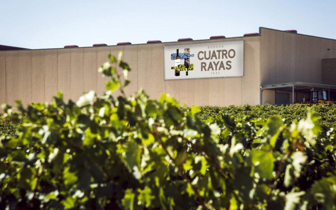 Una buena noticia: La Bodega Cuatro Rayas garantiza con sus socios la recogida de la uva en la próxima vendimia