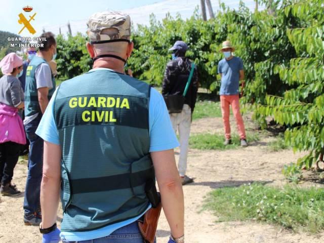 Tras las inspecciones contra la esclavitud, Trabajo busca ahora si las explotaciones agrarias cumplen sus ERTEs