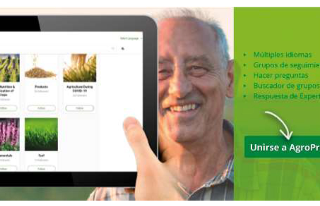 ICL crea AgroPro, un servicio global en línea de información nutricional de cultivos