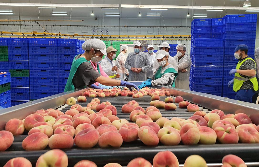 Aviso de la cooperativa Alimer: «El sector tendrá que subir los precios entre un 25 y un 35% para asumir costes»