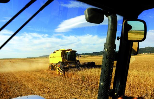 Los cerealistas perderán hasta 500 millones de euros esta campaña en España por los bajos precios