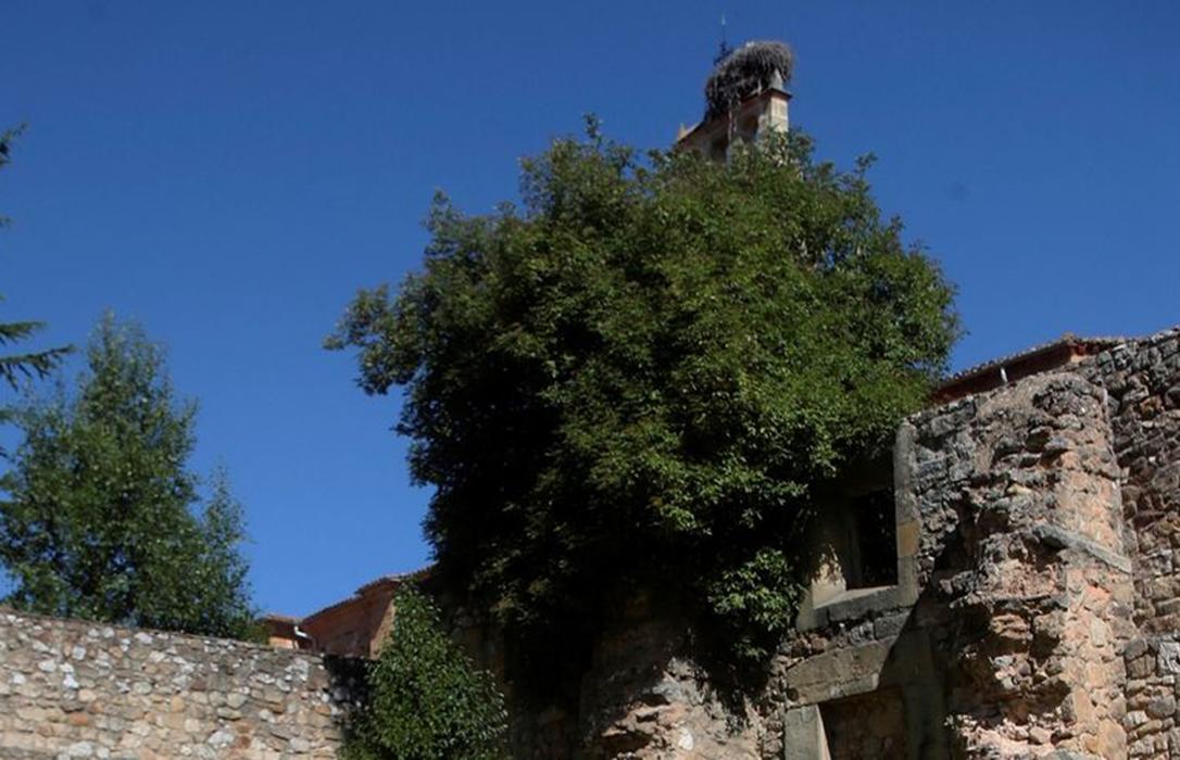 Despoblación: Las CCAA se alían ante Europa y piden que Cuenca, Soria y Teruel tengan ayudas de compensación y deducciones