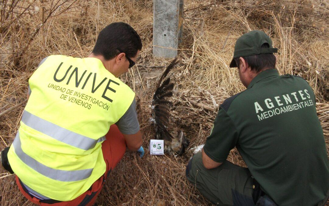 Cebos envenenados en la fauna en España en 25 años: La cifra real podría llegar a más de 200.000 animales muertos