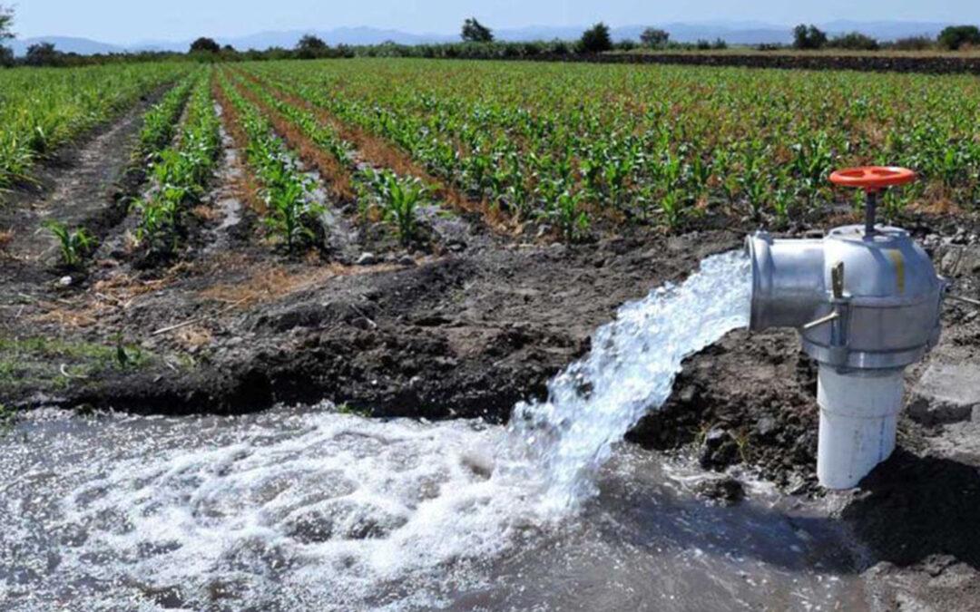 La CH Segura le 'quita' competencias a Murcia y las ejerce «provisionalmente» para las cuencas vertientes al Mar Menor